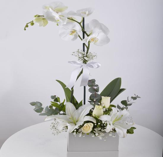 Tek Dallı Beyaz Orkide ve Gül Çiçeği