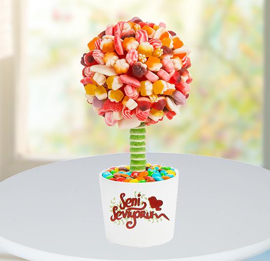 Seni Seviyorum Jelly Ağacı
